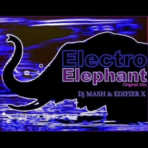Nuuu Mujika: Electro Elephant By Dj Mash