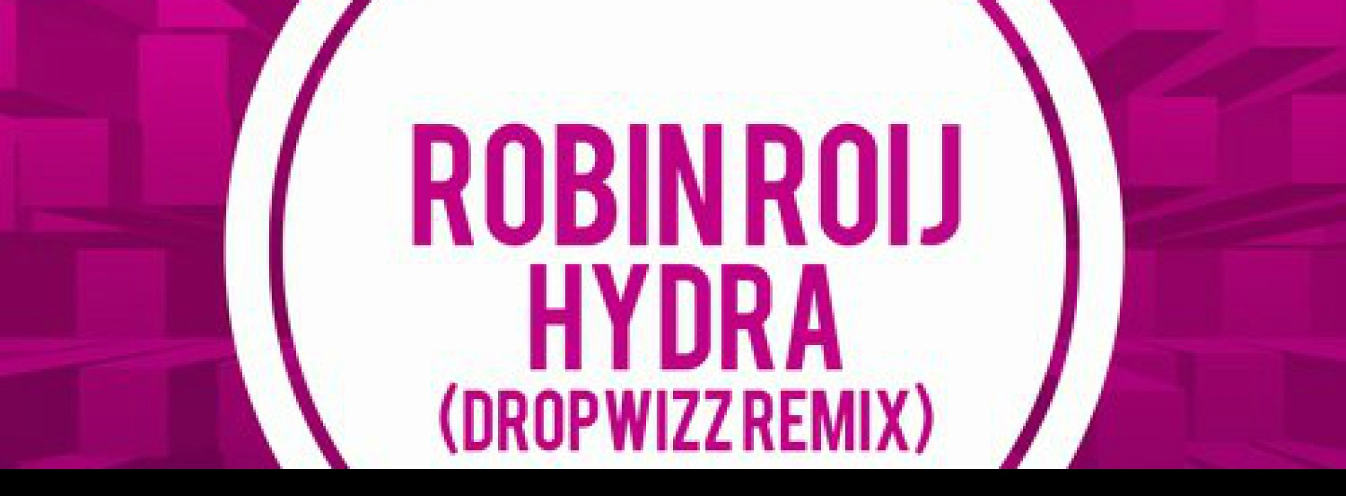 Dropwizz: The First Lankan On The Beatport Glitch Hop Charts!