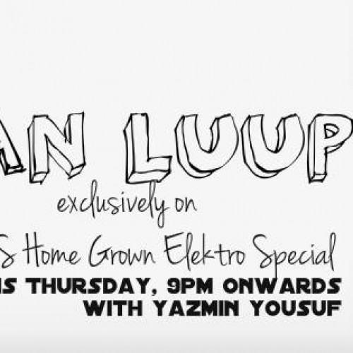 Van Luup On The YES Home Grown Elektro Special