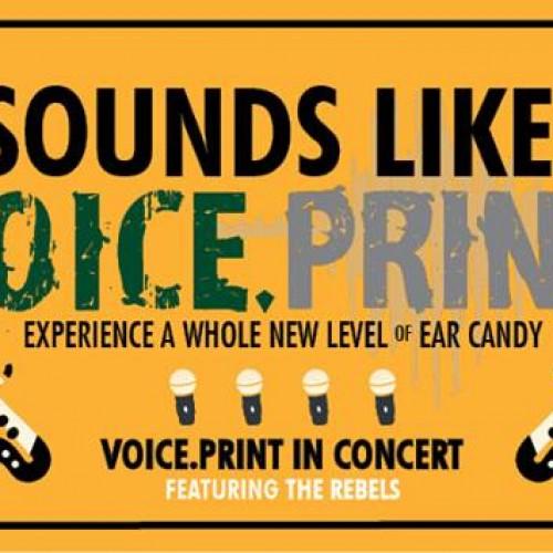 Sounds Like Voice.Print