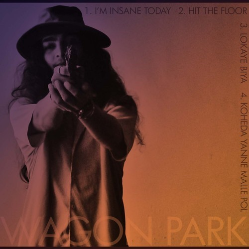 Wagon Park – I'm Insane Today