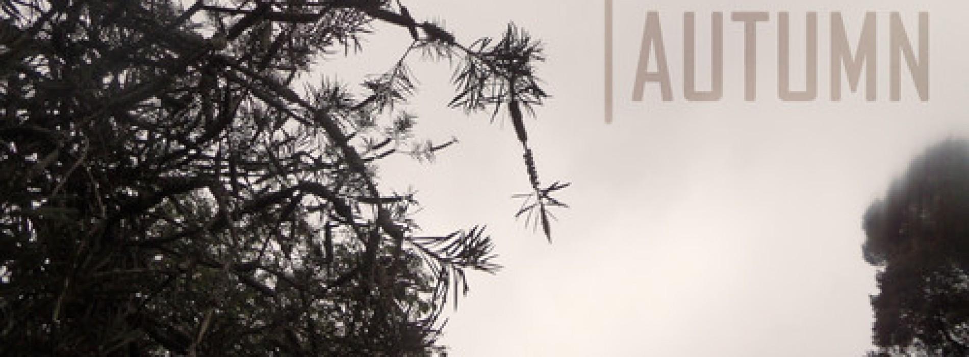 Yaabster Revo – Deep Ambient Autumn