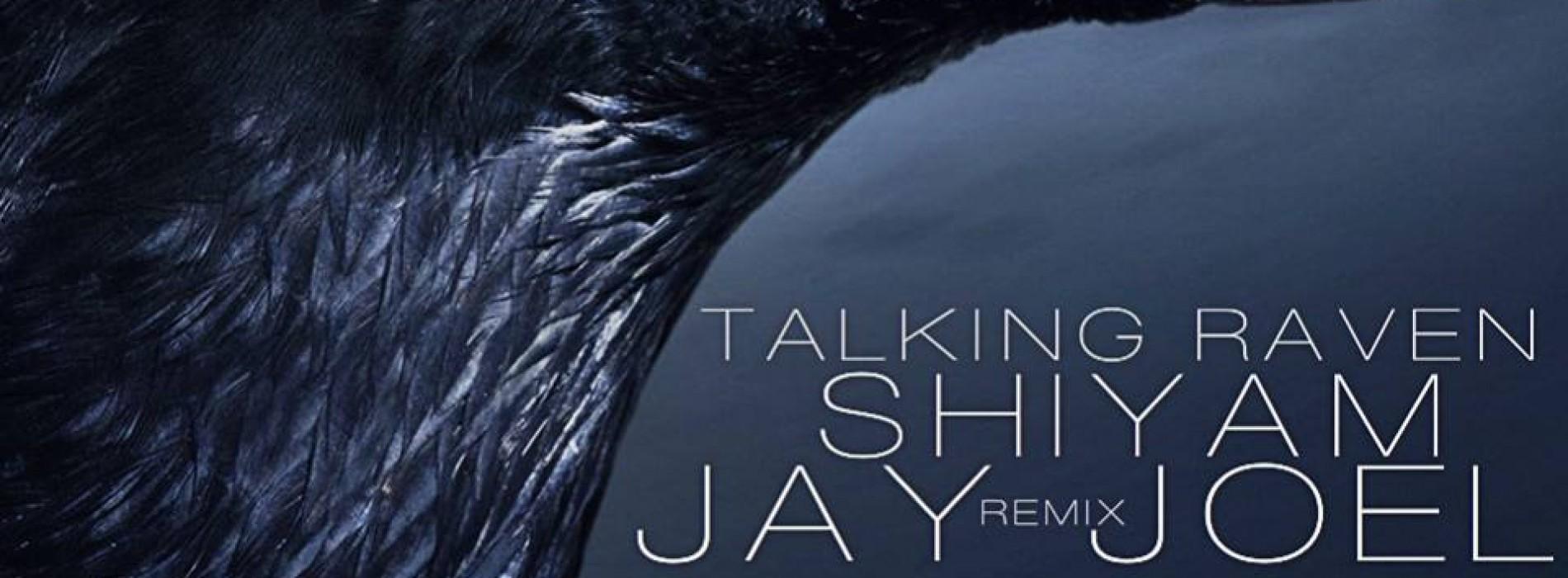"Jay Joel: ""Talking Raven""(Nu Disco Remix)"