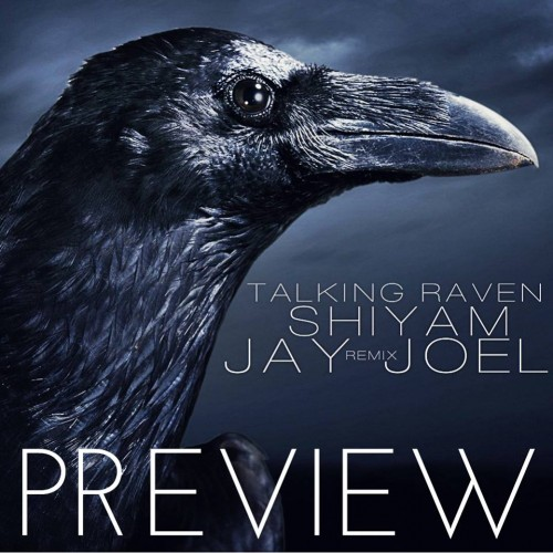 "Jay Joel: ""Talking Raven""(Nu Disco Remix)"