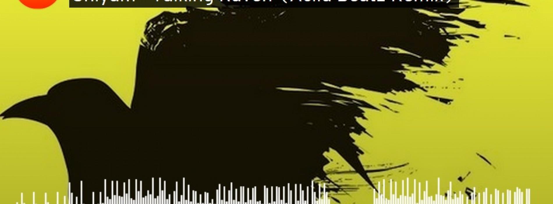 Aciid Beatz – Talking Raven (Remix)