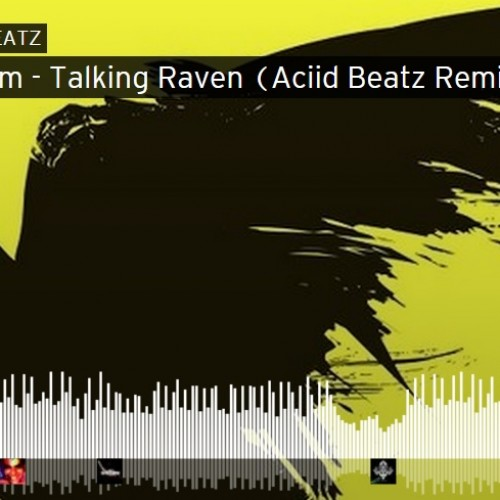 Aciid Beatz – Talking Raven (Remix)