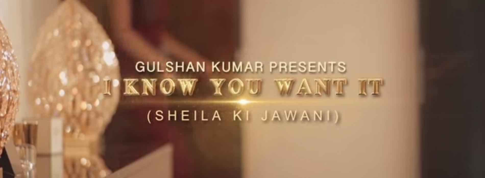 Arjun – 'I Know You Want It – Sheila Ki Jawani'