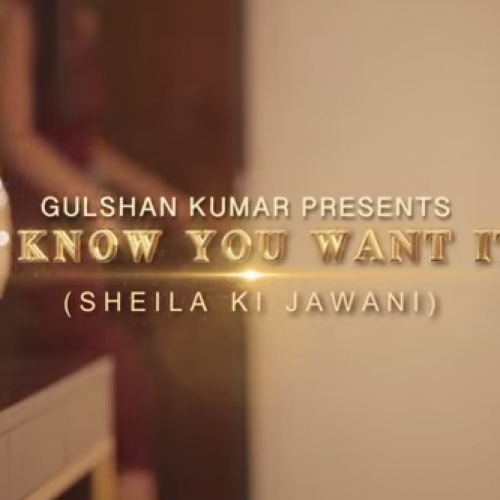 Arjun – 'I Know You Want It – Sheila Ki Jawani'