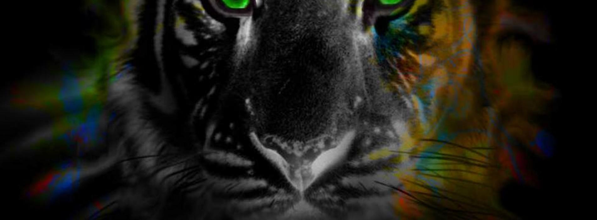 Eightfold & Dropwizz – I Need You To Know ('Jungle Terror' Remix)