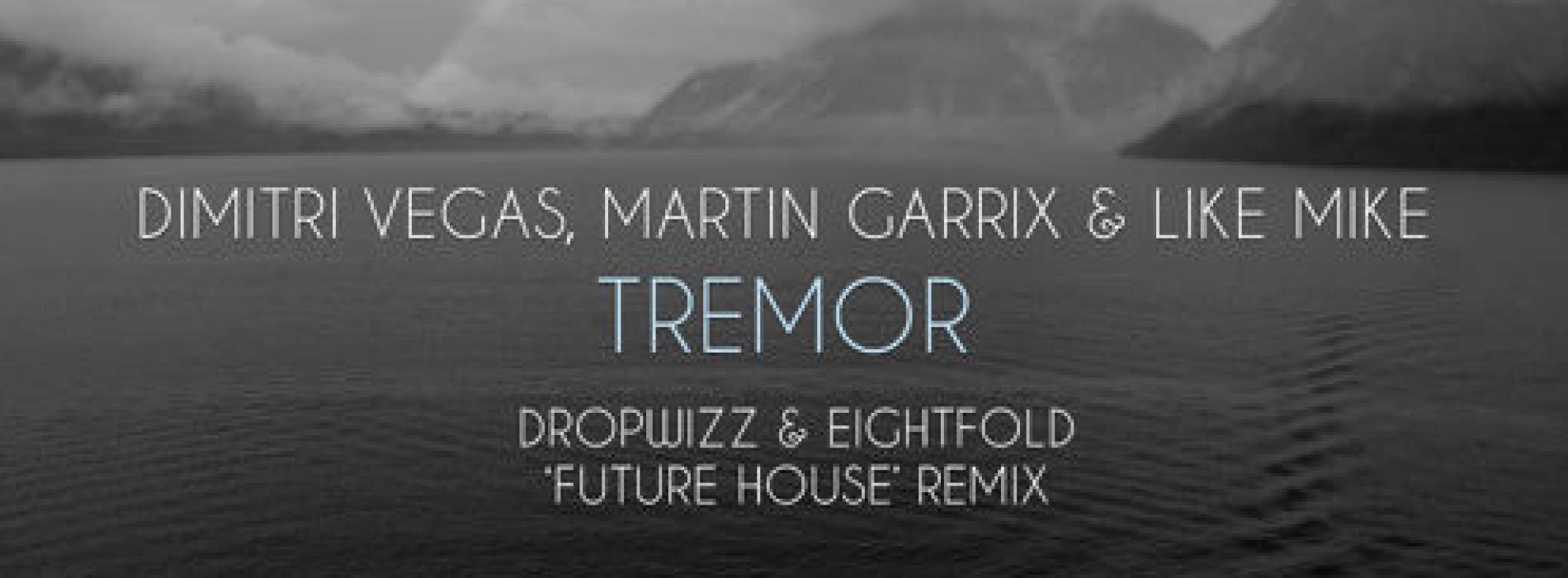 Dropwizz & Eightfold – DV, Martin Garrix & LM – Tremor ('Futcha House' Remix)