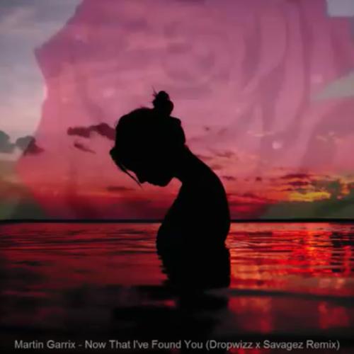 Dropwizz x Savagez : Martin Garrix – Now That I've Found You (Remix)