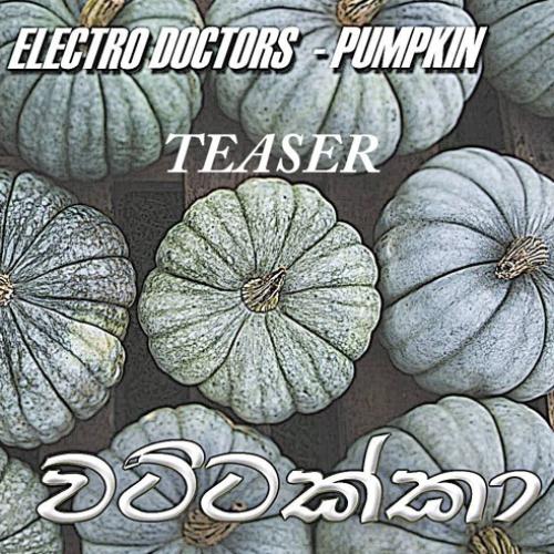 Electro Doctors – Wattakka (Teaser)