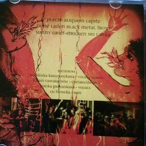 Plecto Aliquem Capite's Final Album, Now Out
