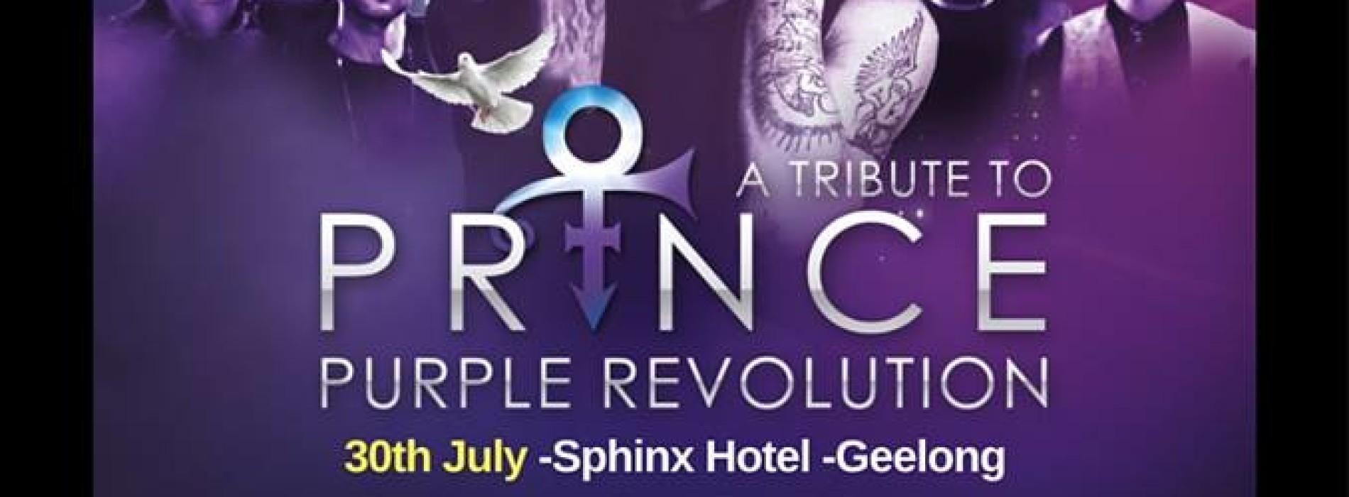 Purple Revolution Plays This Saturday