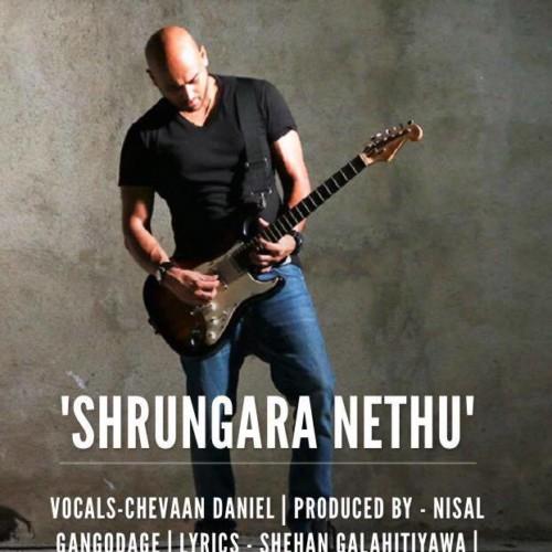 Chevaan Daniel : 'Shrungara Nethu'