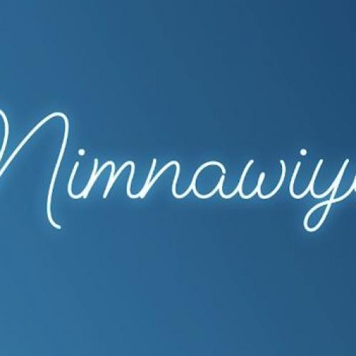Iraj Ft. Nadeera | Shermaine Willis & Master D – Nimnawiye (Official Audio)