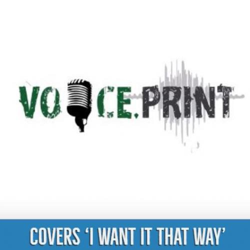 I Want It That Way (Cover) By Voice.Print