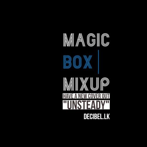 Shaun P. & Gayan FKey (Magic Box Mixup) – Unsteady (Cover)
