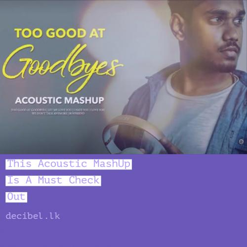 ChamelShav – Too Good At Goodbyes (Acoustic MASHUP)