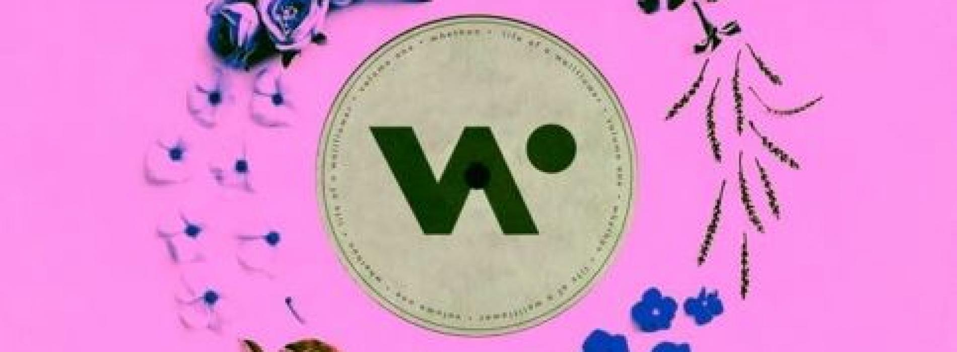whethan – top shelf ft. bipolar sunshine (livsnjutaray remix)