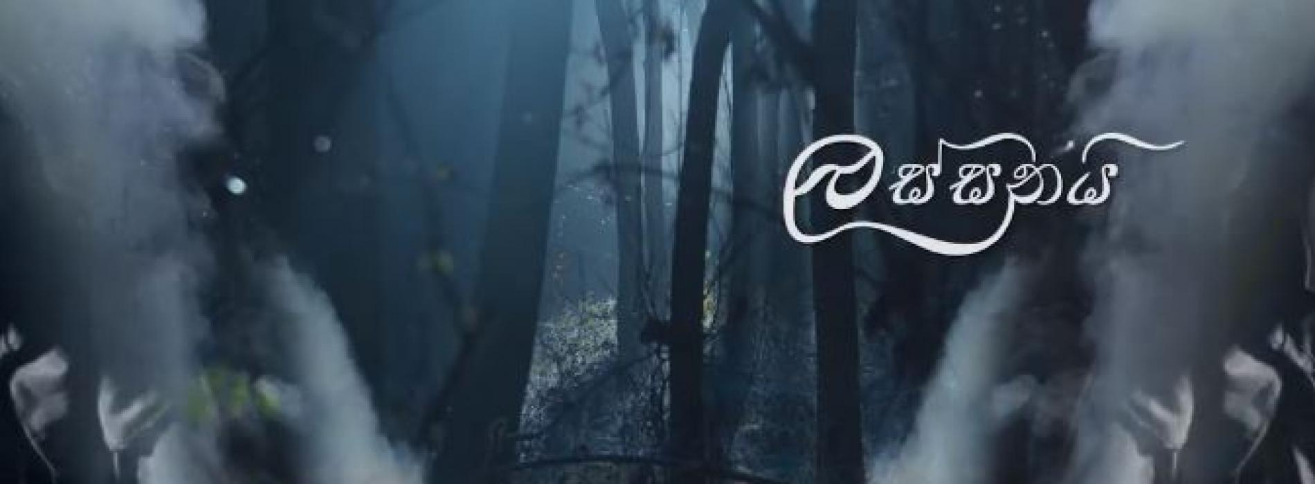 Lassani (ලස්සනයි) Thashi Jayaweera (TJ) | Official Lyric Video