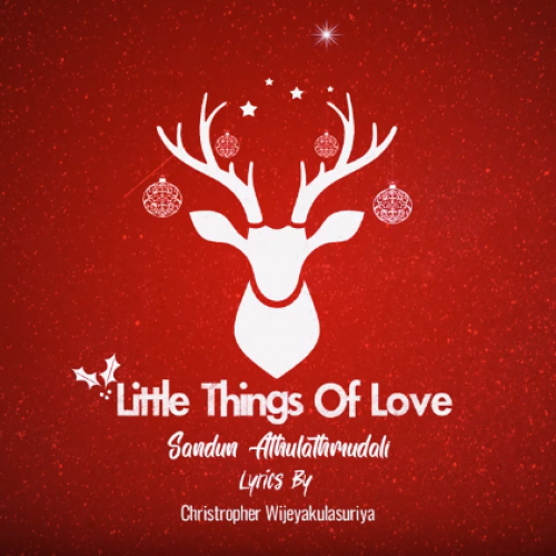 "Sandun Athulathmudali – ""Little Things Of Love"" Official Audio"