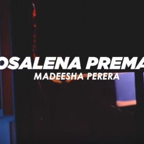 Nosalena Premaya නොසැලෙන ප්රේමය | Madeesha Perera