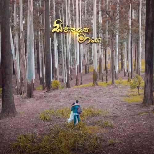 Sihinayaka Maage (සිහිනයක මාගේ) – Shehan David | Official Music Video 2020