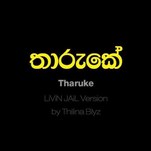Thilina Blyz – තාරුකේ LiViN JAiL Version