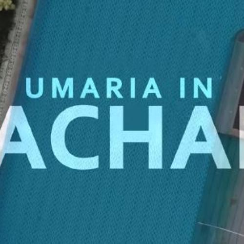 New Music : Ayachana – Umaria | ආයාචනා – උමාරියා