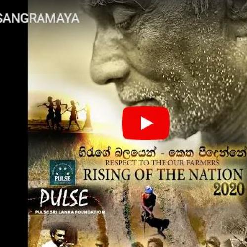 New Music : Pulse Sri Lanka Foundation – Govi Sangramaya