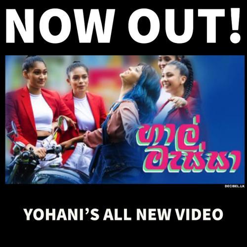 New Music : Yohani – හාල් මැස්සා Haal Massa (වියොලෙ වියෝලේ Viyole Viyole)