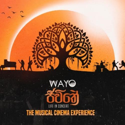 News : Wayo Launches 𝐉𝐞𝐞𝐰𝐢𝐭𝐡𝐞 – 𝐓𝐡𝐞 𝐌𝐮𝐬𝐢𝐜𝐚𝐥 𝐂𝐢𝐧𝐞𝐦𝐚 𝐄𝐱𝐩𝐞𝐫𝐢𝐞𝐧𝐜𝐞