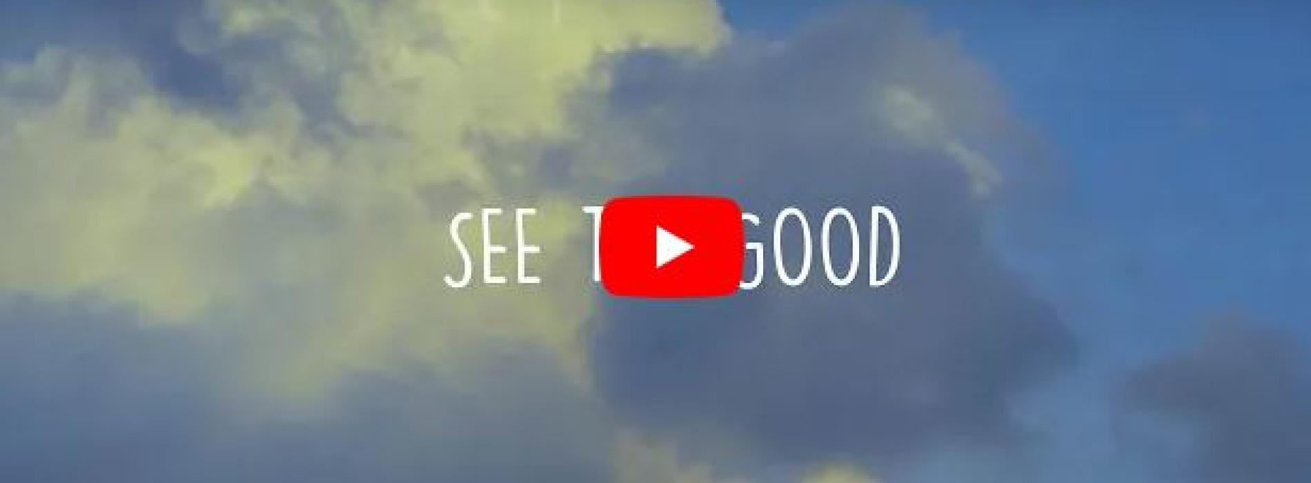 New Music : Danuja Perera – See The Good (Official Lyric Video)