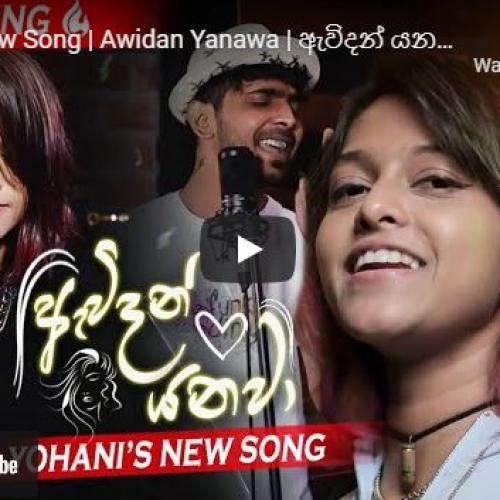 New Music : Yohani New Song | Awidan Yanawa | ඇවිදන් යනවා | Yohani ft Funky Dirt | Studio Recording